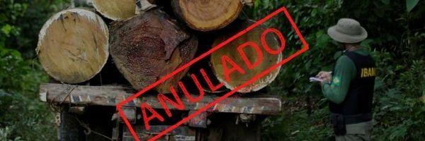 Multa ambiental por transporte de madeira anulada