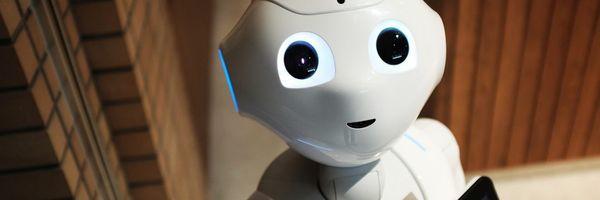 A (ausência da) intervenção humana na revisão de decisões automatizadas