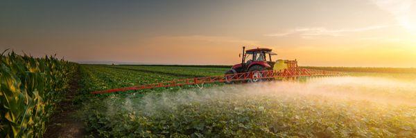 O que está em jogo no julgamento sobre isenção tributária para agrotóxicos no STF