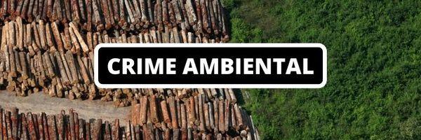 Ausência de Perícia em Crime Ambiental pode causar a Absolvição do Réu