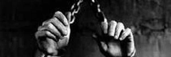 """""""Pau que dá em Chico, dá em Francisco"""". O Acordo de Não Persecução Penal, inovação da Lei n.º 13.964/19."""