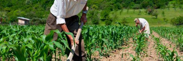 Turma Nacional decide sobre tempo rural remoto na aposentadoria por idade híbrida