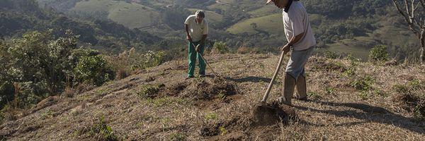 Pagamento por Serviços Ambientais é aposta de organização ambiental para promover desenvolvimento com conservação ambiental
