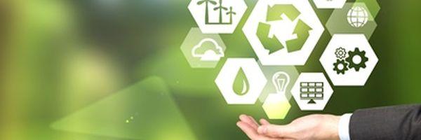 SEMACE informa tempo para emitir a Licença Ambiental