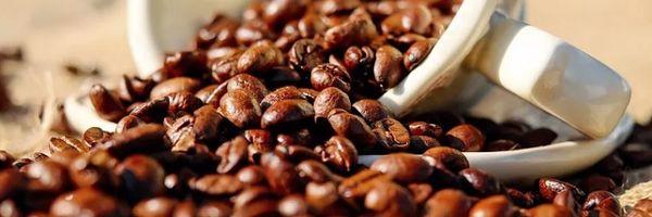 Posse de cafeína pode ser considerada delito de tráfico de drogas
