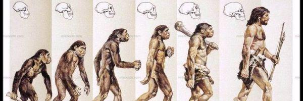 O ano em que eu evoluí