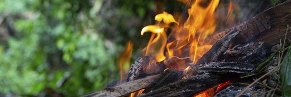 Amazônia legal em chamas