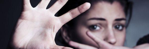 A resposta do Poder Legislativo à violência doméstica
