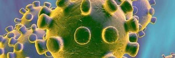 Coronavirus: Quarenta e Isolamento.