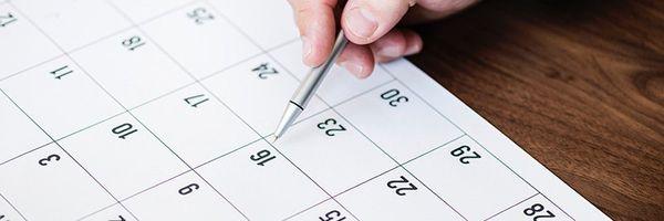 Calculadora de Prazos Processuais