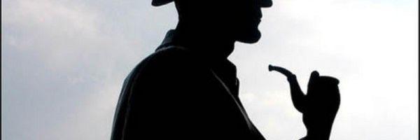 Princípios Processuais e Atuação de Detetive no Inquérito Policial