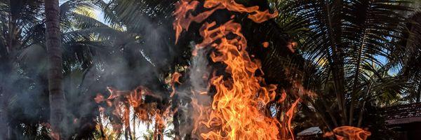 """Se eu colocar fogo """"de encontro"""" para combater incêndios, serei punido?"""