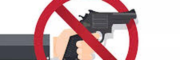 O crime de porte ilegal de arma de fogo de uso permitido e a tese de ausência de perícia no artefato.
