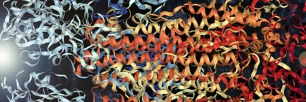 Cientistas sequenciam proteína do Sars-CoV-2 e transformam em música