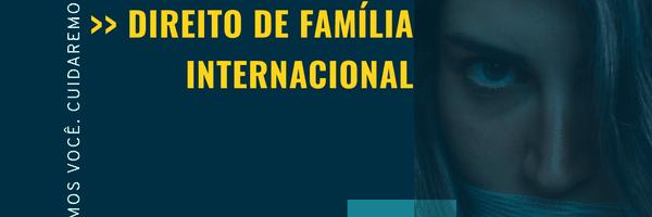 Child custody: O estudo da concessão de guarda no direito de família norte-americano
