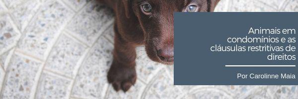 Animais em condomínios e as cláusulas restritivas de direito