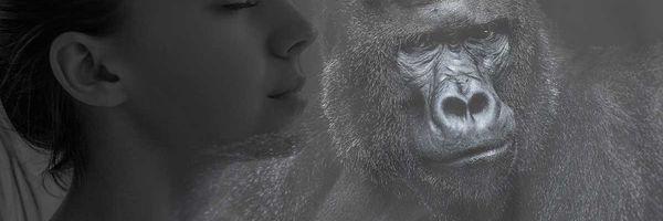 """O fim do """"efeito Konga, a mulher gorila"""""""