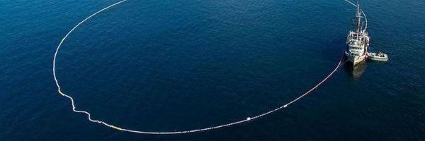 Por ausência de dolo, Pescador é Absolvido de Crime Ambiental