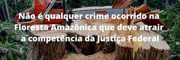 Crime Ambiental na Floresta Amazônica, quem julga?