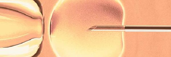 Plano de saúde deve custear procedimento de fertilização in vitro