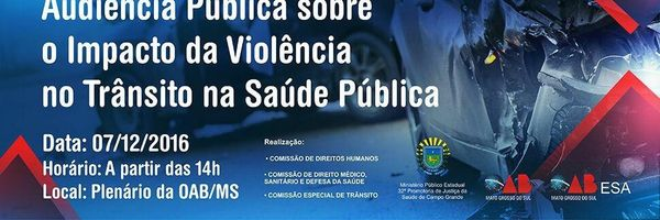 Audiência Pública sobre o Impacto da Violência do Trânsito na Saúde Pública