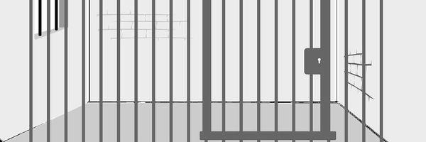 Detento primário em prisões exclusivas resolve o problema?