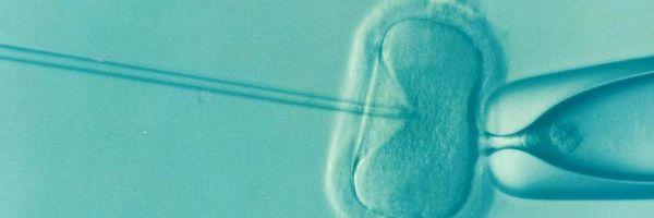 Custeio de tratamento de congelamento de óvulos para portadora de câncer é de responsabilidade do plano de saúde
