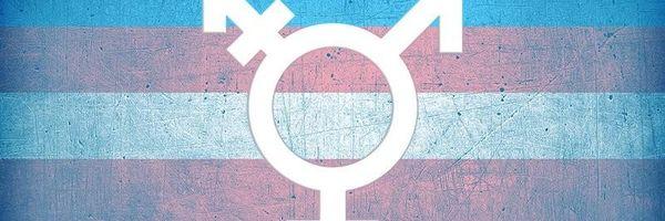 O Direito dos Transexuais à Retificação do Registro Civil: uma nova visão do STJ