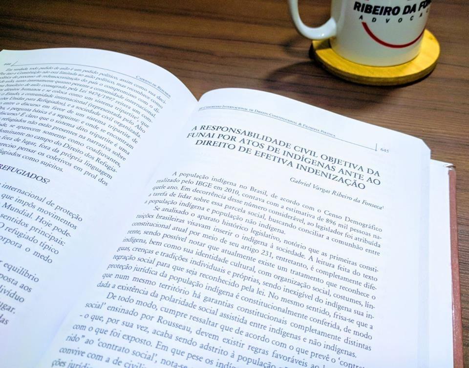 A responsabilidade civil objetiva da FUNAI por atos de indígenas ante ao direito de efetiva indenização