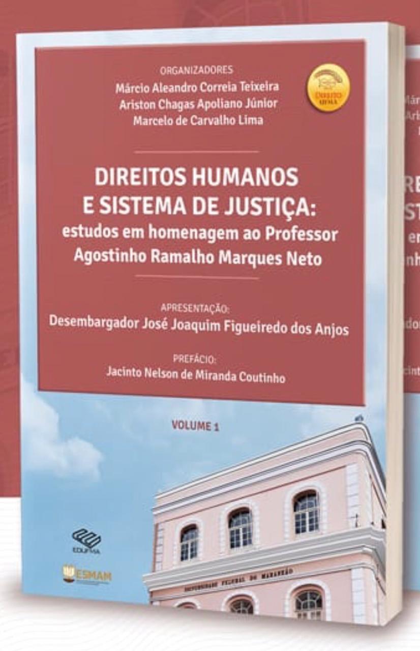 DIREITOS HUMANOS E SISTEMA DE JUSTIÇA: estudos em homenagem ao Prof.Agostinho Ramalho Marques Neto (Co-autor)