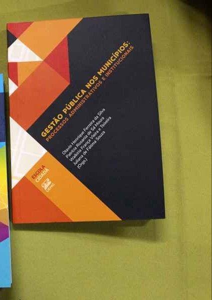 GESTÃO PÚBLICA NOS MUNICÍPIOS: PROCESSOS  ADMINISTRATIVOS E INSTITUICIONAIS
