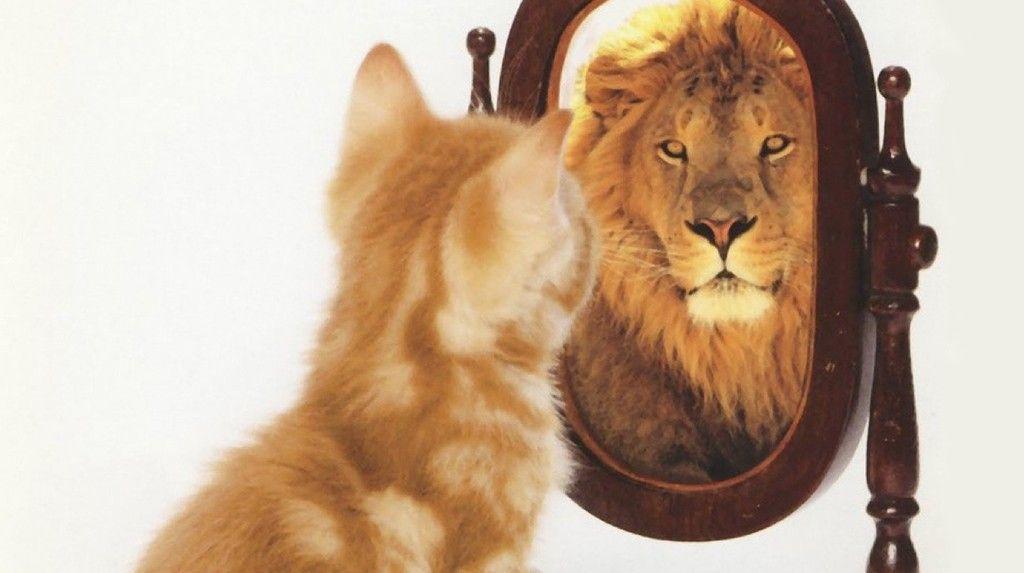 O quanto voc acredita em voc mesmo