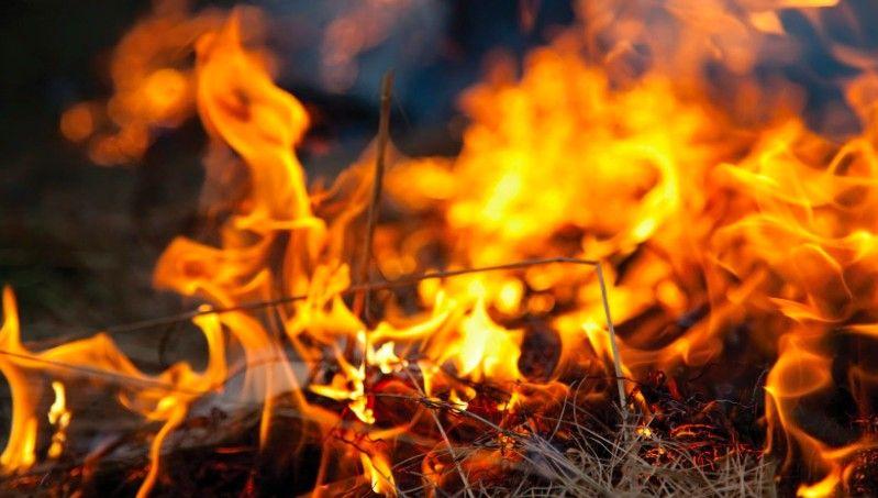 Acabei de juntar um monte de coisa velha que no quero mais Posso tocar fogo em tudo dentro do meu quintal
