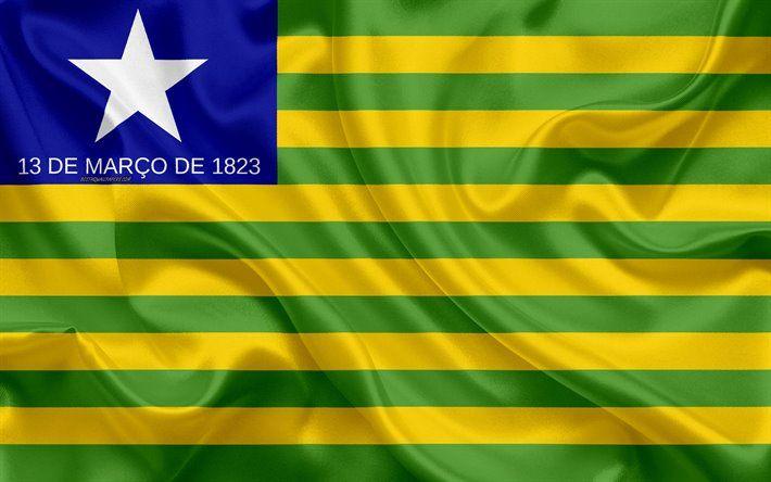 Bandeira do Estado do Piauí