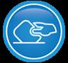icone direito eleitoral e processual eleitoral