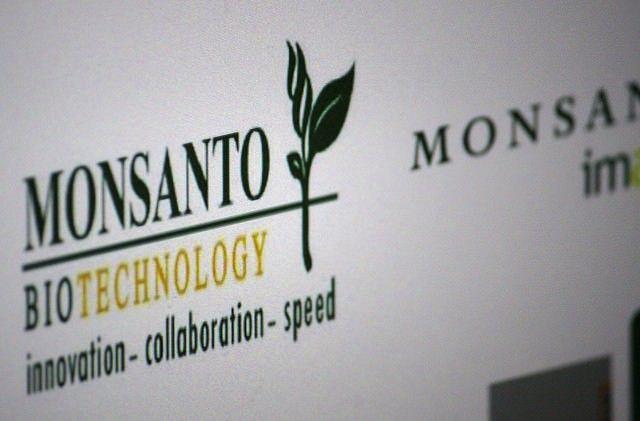 Monsanto se intromete na produo de orgnicos movimentos criticam